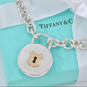 Huge Tiffany & co. Round Keyhole padlock necklace